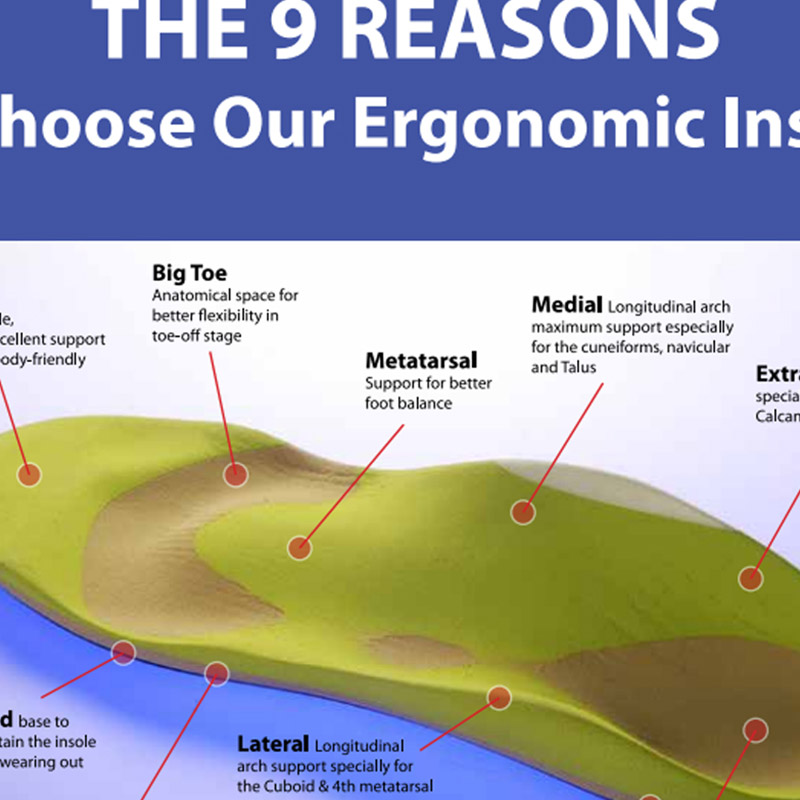 BIOFOOT 9 Reason Flyer